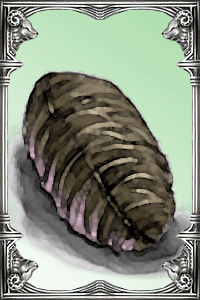 Ragnarok-online-beta-pupa-card.png