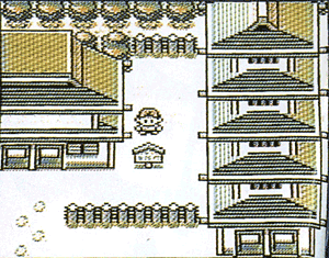 PKMN GS Unknown 1 screenshot 1.png