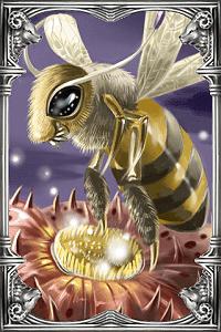 Ragnarok-online-beta-hornet-card.png