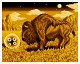 CameltrySNES-Pic4-INT.png