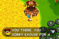 Grunty's Revenge Early Proto screen42.PNG