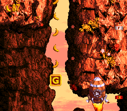 Dkc3-rocket-run-e-with-g.png