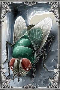 Ragnarok-online-beta-windchonchon-card.png