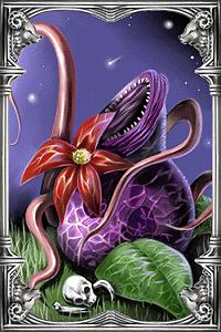 Ragnarok-online-beta-mandragora-card.png