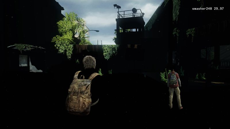 Tlou-shadow.jpg