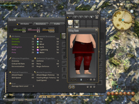 FFXIVARR-Judge's Skirt.png