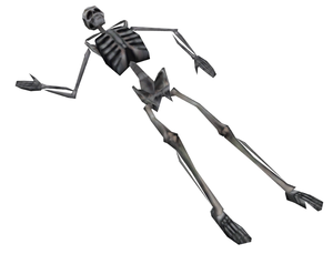 Hl skeleton.png