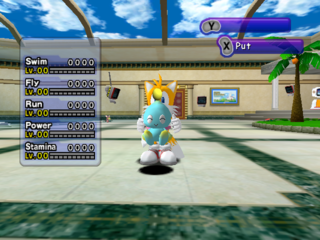 Proto:Sonic Adventure DX: Director's Cut (GameCube)/Preview