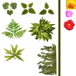 CSS flowerbed2 used.png