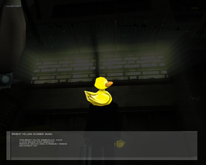 HMContractsPC-FIN BrightYellowRubberDuck.png