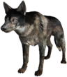 FO3-Dog.png