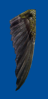 Lbp3 mw bird wing.png