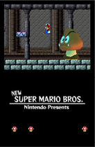 Prerelease:New Super Mario Bros  - The Cutting Room Floor